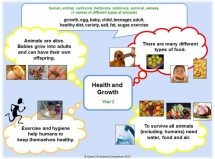 Y2 - Health & Growth