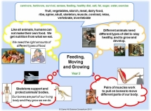 Y3 - Feeding, Moving & Growing